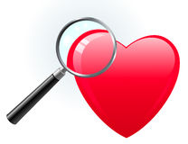 Heart under magnifying glass Stock Images