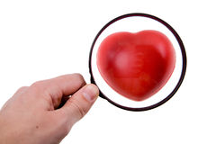 Heart under magnifying glass. Hand holding magnifying glass over the heart Royalty Free Stock Images