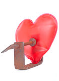 Heart under pressure. Model of the heart squeezed in the rusty metal clamp. Isolated on white Stock Photo