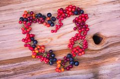 Heart from various berries Royalty Free Stock Image