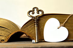 Heart and vintage key Royalty Free Stock Photo
