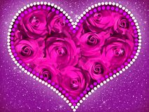 Heart of violet roses. royalty free stock photography