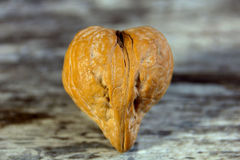 Walnut heart Royalty Free Stock Images