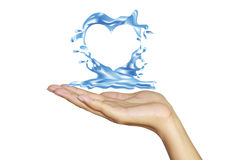Heart from water. Splash with human hands isolated on white Stock Photo