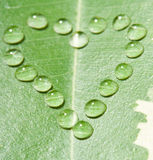 Heart from water drops on leaf Royalty Free Stock Photos