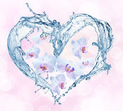 Heart from water splash with bubbles Royalty Free Stock Photo