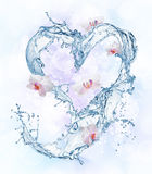 Heart from water splash with bubbles Stock Image