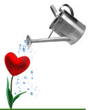Heart and watering can Royalty Free Stock Photography