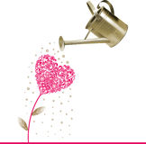 Heart and watering can. Stock Images