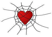 Heart in web on white background. Heart in web on white background Stock Image