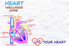 Heart wellness care words in snow white backgrund Royalty Free Stock Photos