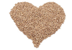 Heart of the wheat grain Royalty Free Stock Photo