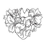 Heart with white lilies in romantic style. Blooming Heart concept. Stock Image