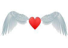 Heart and white wings Stock Photo
