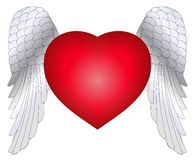 Heart Wings Stock Photos