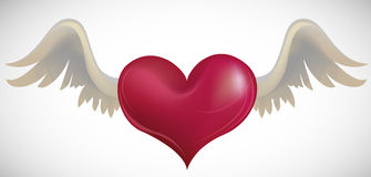 Heart with wings. Heart with angelic wings, vector illustration. Layers are managed and arranged for easy editing Royalty Free Stock Photography