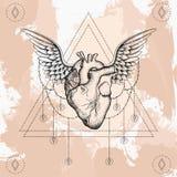Heart with wings, boho blackwork, dotwork tattoo.  Stock Photos