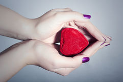 Heart in Woman Hands. Red Love Symbol Stock Image