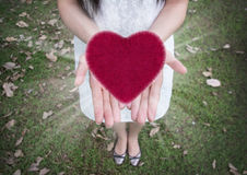 Heart in women hands ,Love, Valentine`s day background Stock Photography