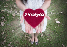 Heart in women hands ,Love, Valentine`s day background Stock Image