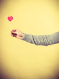 Heart on wooden stick. Royalty Free Stock Image