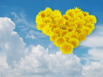 Heart from yellow flowers. Blue sky. Heart from yellow flowers (dandelions) on a background blue sky with clouds Royalty Free Stock Photos