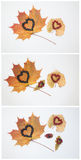 Heart on leaves. Royalty Free Stock Photo