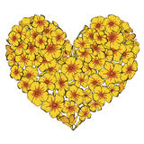 Heart of yellow phlox flowers isolated on white background. Vector illustration. Heart of yellow phlox flowers isolated on white background. Vector Royalty Free Stock Images