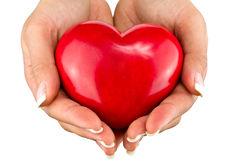 Heart for you. Red heart on the female hand Stock Images