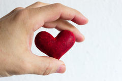 Heart for you Stock Images