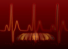 Heartbeat glow warm Stock Photography