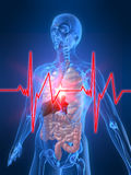 Heartbeat/heartattack Stock Photo
