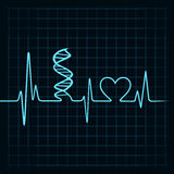 Heartbeat make DNA stand and heart symbol Royalty Free Stock Photography