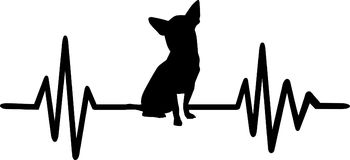 Dog heartbeat line with chihuahua. Heartbeat pulse line dog with chihuahua silhouette black Royalty Free Stock Images