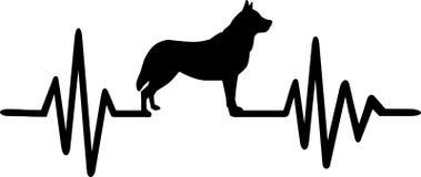 Dog heartbeat line with husky. Heartbeat pulse line dog with husky silhouette black Stock Images