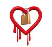 Heartbleed臭虫和挂锁 免版税库存图片