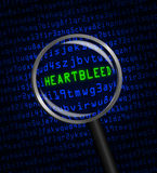 Heartbleed revealed in computer code through a magnifying glass. The word Heartbleed revealed in blue computer machine code through a magnifying glass Stock Photo