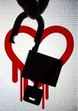 Heartbleed, un insetto critico di OpenSSL Fotografia Stock