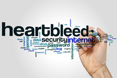 Heartbleed word cloud. Concept on grey background Stock Photography