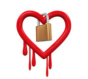 Heartbleedinsect en Hangslot Royalty-vrije Stock Afbeeldingen