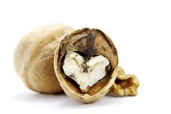 Hearted грецкий орех Стоковая Фотография RF