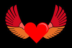 Hearted wings Stock Images