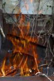 The hearth burn firewood and branches for coal.  royalty free stock photography