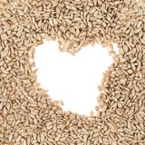 Hearth shaped sunflower seeds frame Royalty Free Stock Images