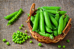 Hearthy fresh green peas and pods on rustic fabric Royalty Free Stock Photography