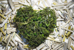 Heartmoss Stockbild