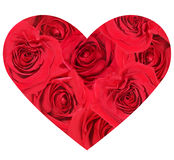 heartroses s Royaltyfria Foton