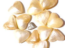 Hearts. Shell hearts with pewter heart Stock Image