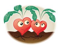 Hearts. Two hearts grow in the garden Stock Image