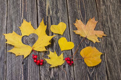 Hearts, autumn leaves and rowan berries Stock Image